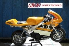 Minibike_sis